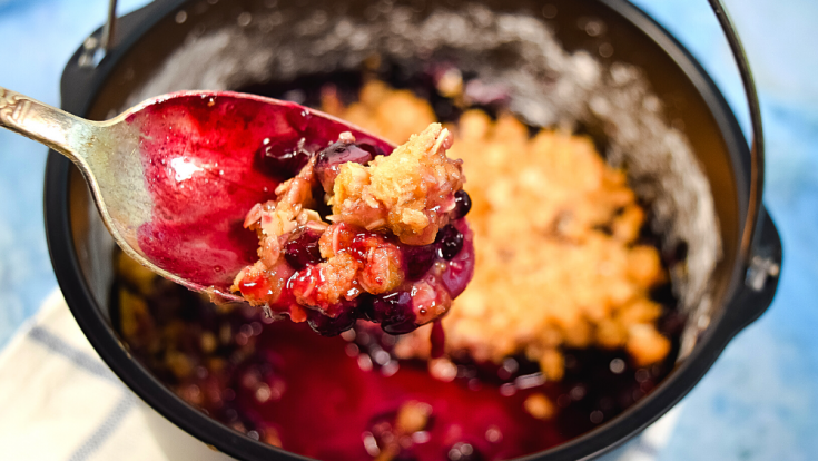 Blueberry Crisp in the Air Fryer